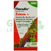Salus Floradix 250ml