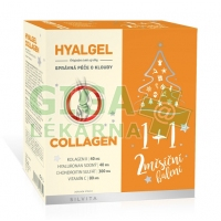 Hyalgel COLLAGEN 2x500ml