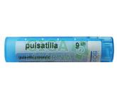 Pulsatilla CH9 gra.4g
