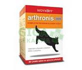Arthronis mini ACUTE CANIS sýr.pří.60tbl