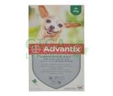 Advantix pro psy spot.on.do 4kg a.u.v.4x0.4ml
