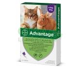 Advantage 80mg spot kočky+král.4x0,8ml