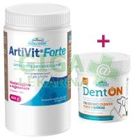 AKČNÍ SET: ArtiVit Forte prášek 600g + DentON 100g
