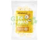 Obrázek Allnature Ananas sušený mrazem kousky 20g