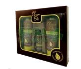 Argan Oil Gift Set-100ml Shampoo & Conditioner 30ml Oil