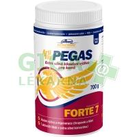 ArtiVit Pegas Forte 7 prášek 700g