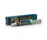 Energy Booster Bioveta pasta 20g