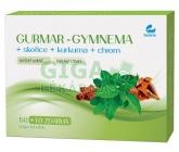 GURMAR-gymnea+skořice+kurkuma 60tob.