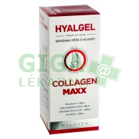 Hyalgel Collagen MAXX 500ml