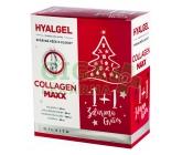 Hyalgel Collagen MAXX vánoční balení 2x500 ml