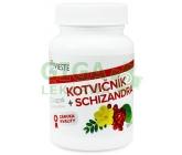 Kotvičník+Schizandra 30cps.