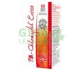 Obrázek Chlanydyl Extra PM 60 tablet