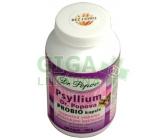 Psyllium Dr.Popova PROBIO cps.120