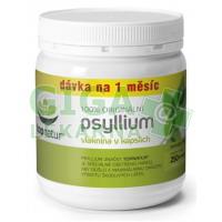 Psyllium kapsle 250ks Topnatur
