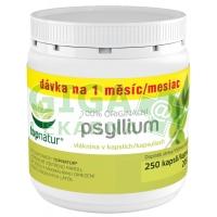 Topnatur Psyllium Medicol kapsle 250 ks