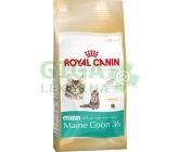 Royal Canin Feline BREED Kitten Maine Coon 400g