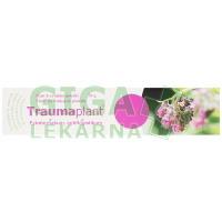 Traumaplant mast 100g